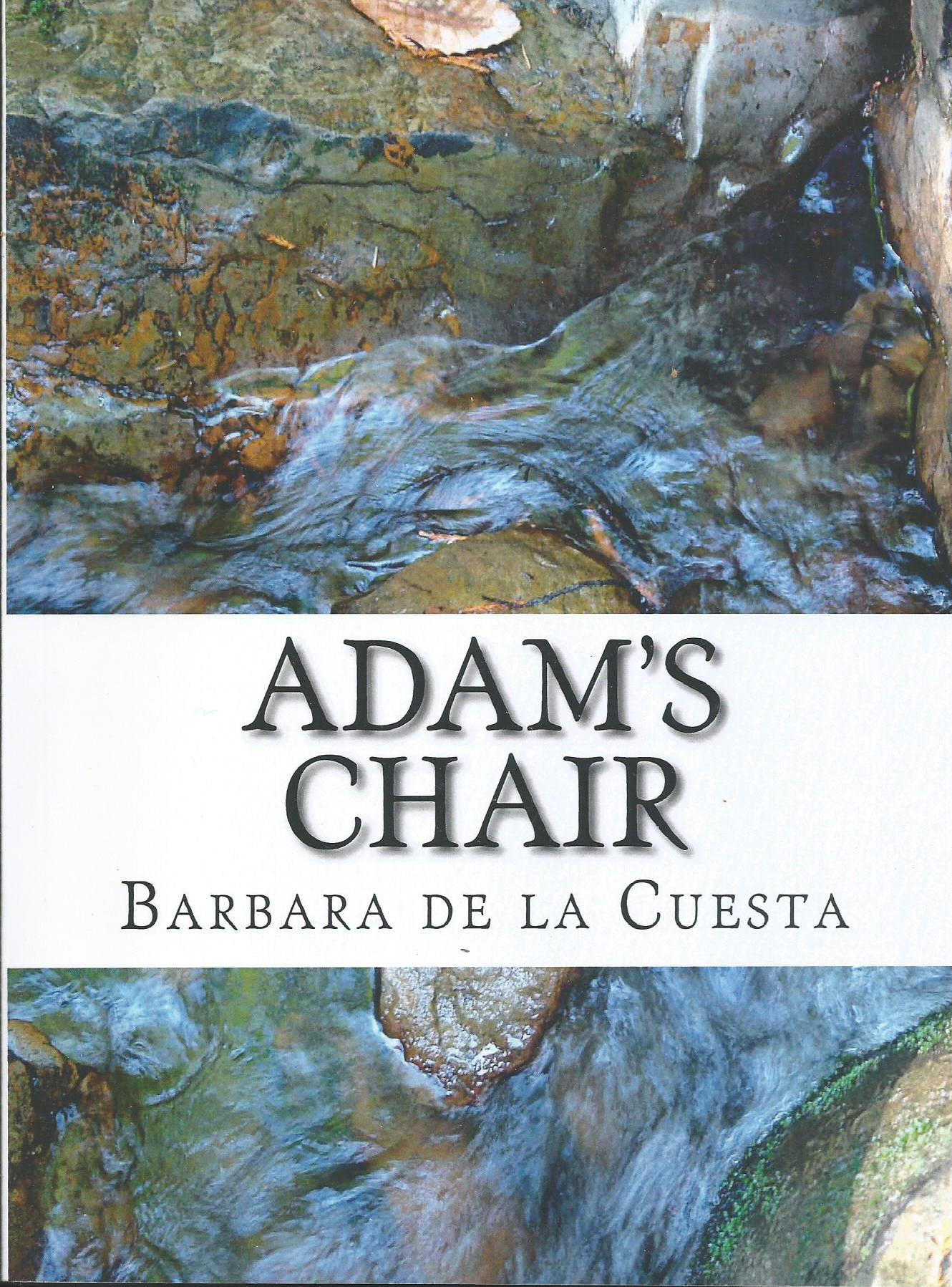 Adam's Chair