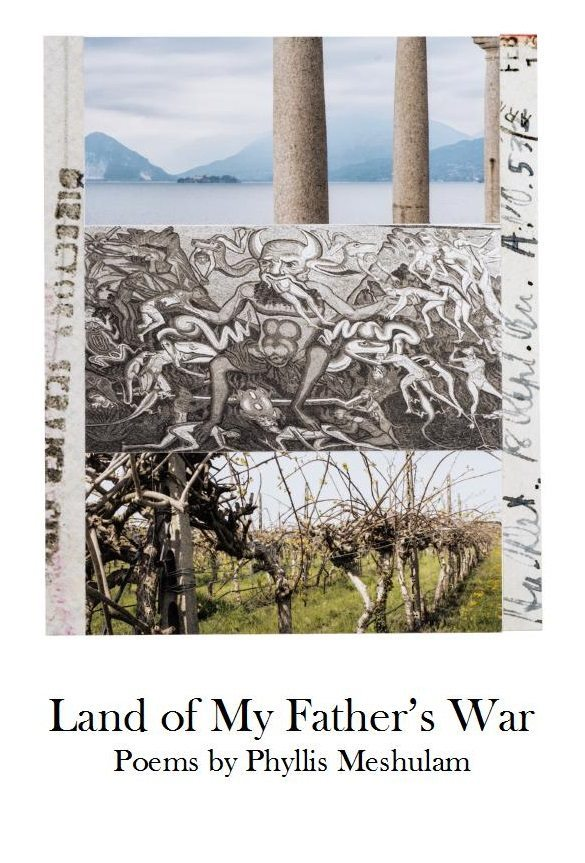 Land of My Father's War