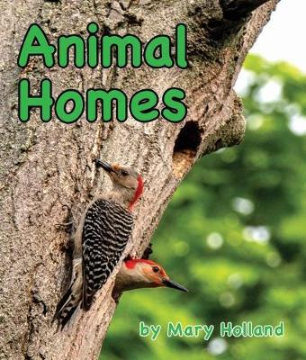 Animal Homes (Animal Anatomy & Adaptations)