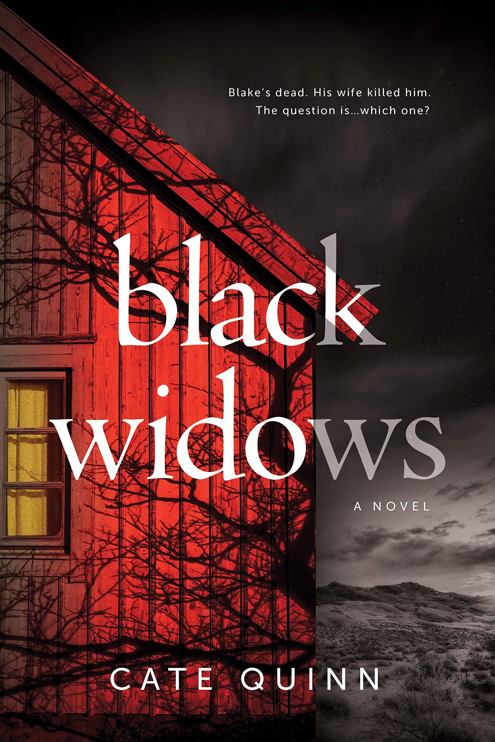Black Widows: A Domestic Thriller