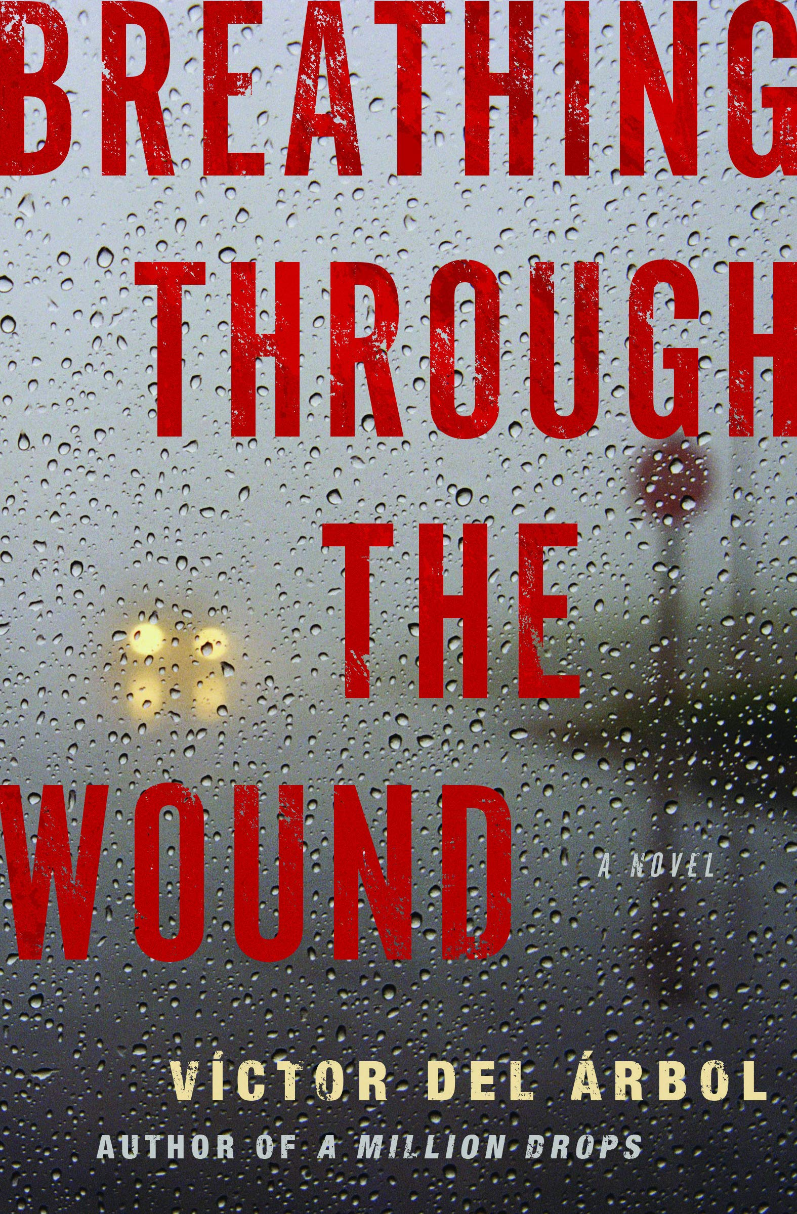 Breathing Through the Wound: A Novel