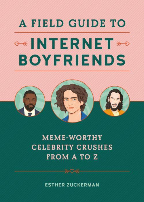 field_guide_to_internet_boyfriends