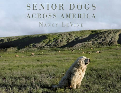 Senior Dogs Across America: Portraits of Man's Best Old Friend