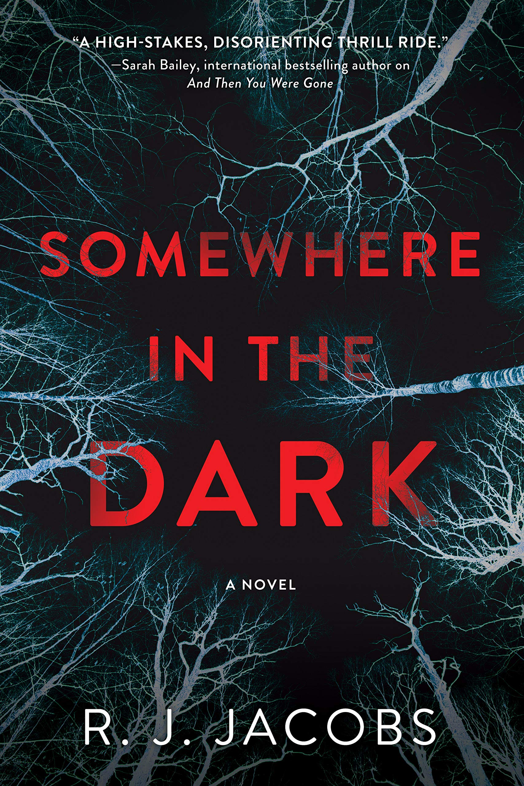 Somewhere in the Dark: A Novel